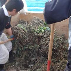 堆肥材料の積み込み