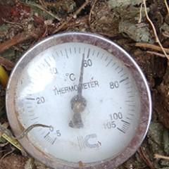 発酵して温度が上がっている堆肥